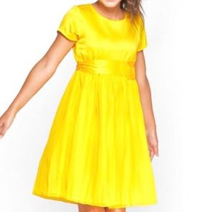 Disney Princess Belle Dress, M (7-8), NWT